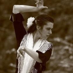 A la decouverte du f dans la foret duende flamenco a mathieu fuster 2