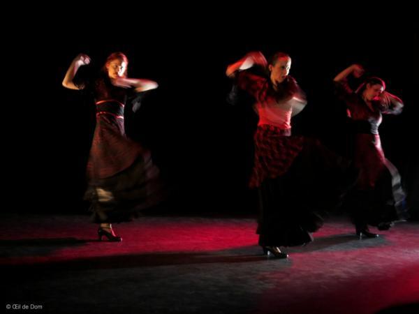 Siguiriya- Poussière Etoiles - Duende Flamenco- Th B 050316