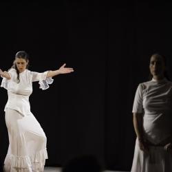 Duende flamenco de la poussiere et des etoiles 1 bibli glacis belfort 1018