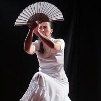 Duende flamenco de la poussiere et des etoiles 14 saone 80218