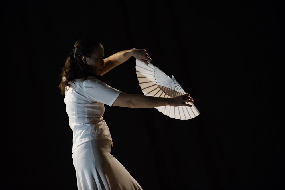 Duende flamenco de la poussiere et des etoiles 2 bibli glacis belfort 1018