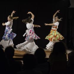 Duende flamenco de la poussiere et des etoiles 3 bibli glacis belfort 1018