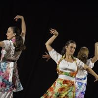 Duende flamenco de la poussiere et des etoiles 4 bibli glacis belfort 1018