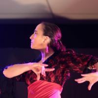 Duende flamenco de la poussiere et des etoiles 48 saone 80218