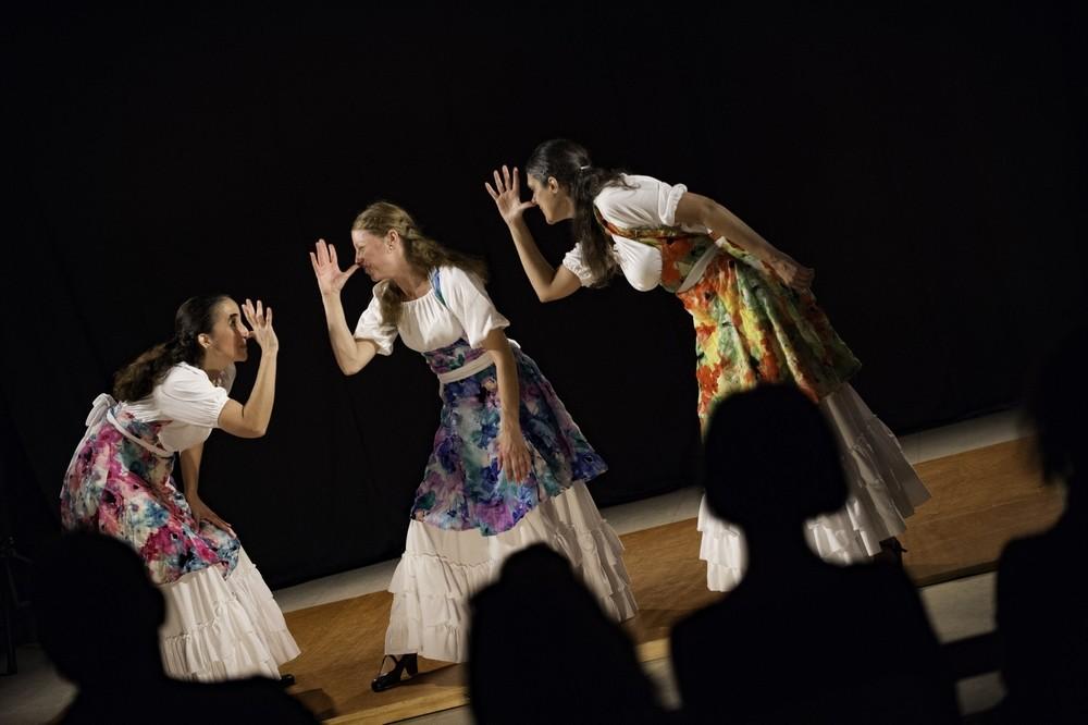 Duende flamenco de la poussiere et des etoiles 5 bibli glacis belfort 1018