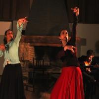 Duende flamenco flamencura alegria 1 répétition