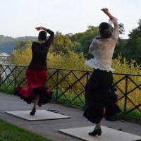 Voyage Flamenco Off Tourisme Besançon 2017 3 - Duende Flamenco - Photo Terre de chez Nous