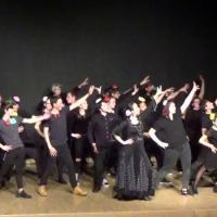 Residence un art pour combattre duende flamenco college st laurent 8