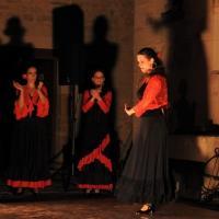 Voyage flamenco a montbozon duende flamenco a mathieu fuster tiento 2 photo m a boterff