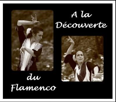 Affiche a la decouverte du flamenco