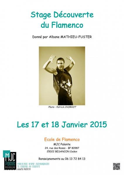 Affiche stage decouverte 2015