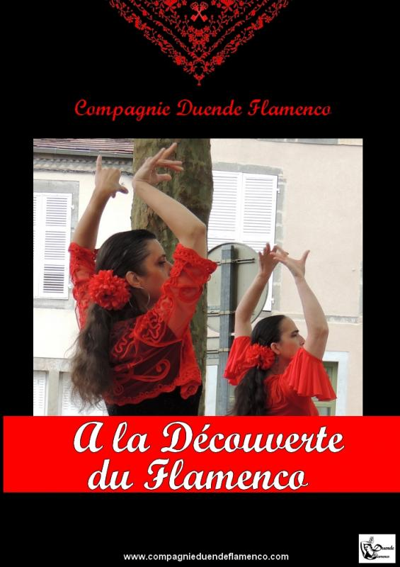 Affiche web a la decouverte du flamenco
