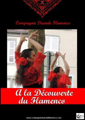 Affiche web a la decouverte du flamenco