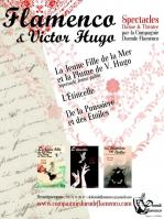 Affiche web flamenco et v hugo