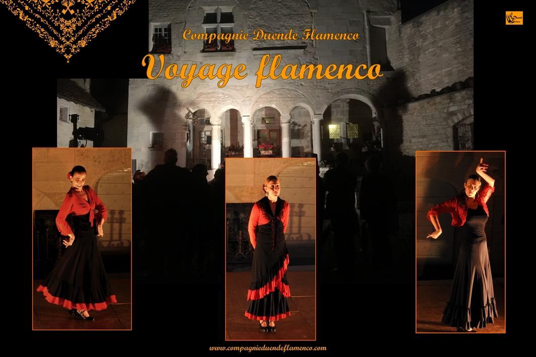Affiche web voyage flamenco