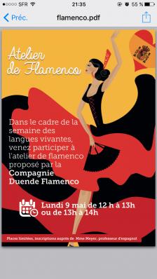 Ateliers flamenco lycee condorcet belfort