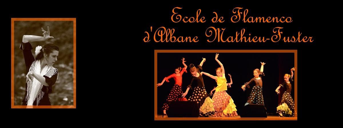 Banniere ecole flamenco