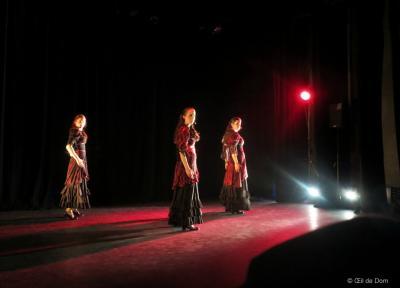 Cie duende flamenco ok 136 copier