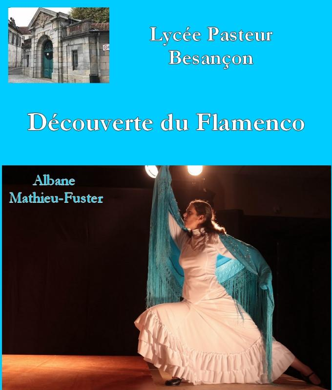 Decouverte flamenco pasteur besancon