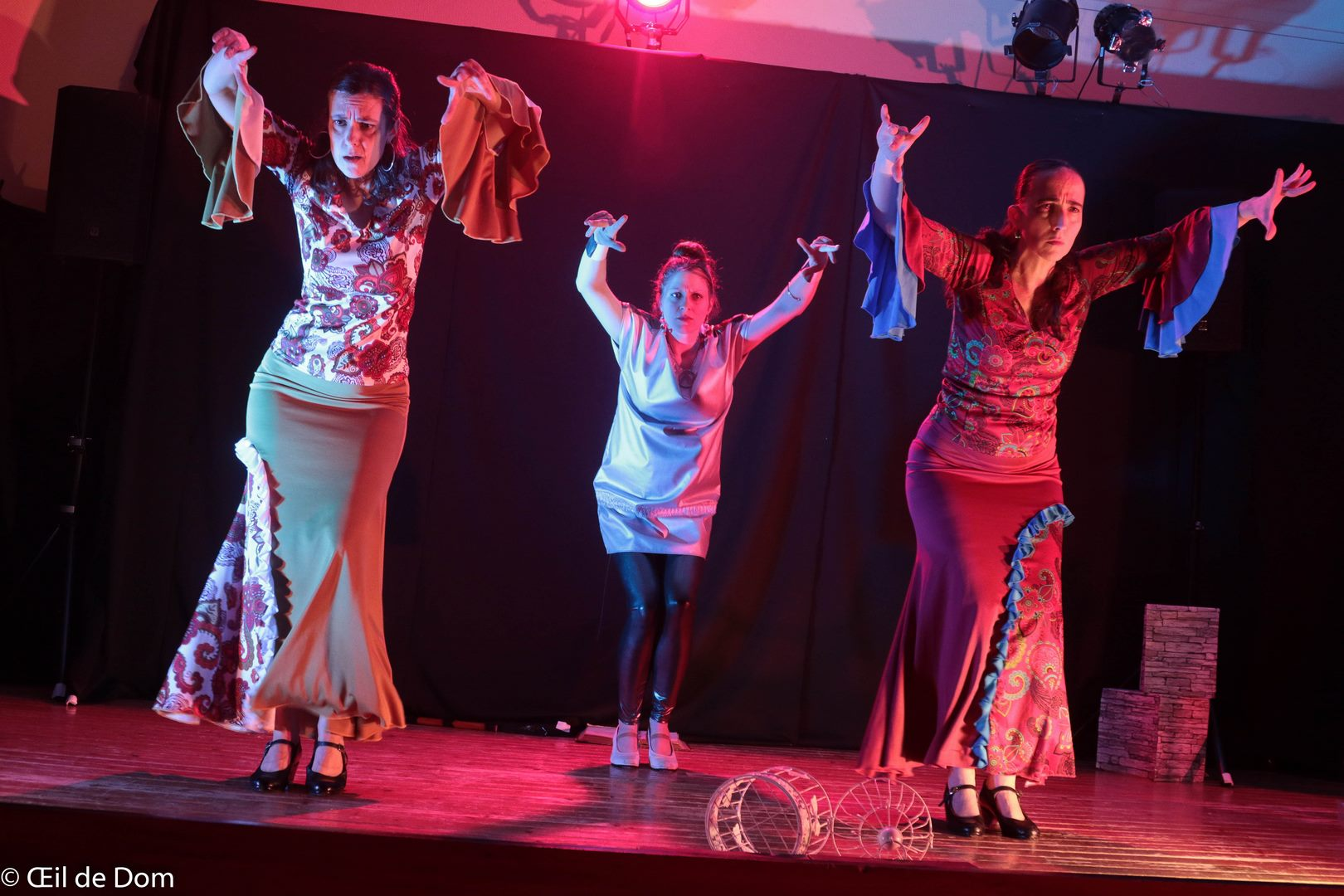 Duende flamenco l etincelle 19 photo d villy