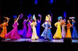 cours et stages adultes Besançon - Ecole Flamenco Albane Mathieu-Fuster