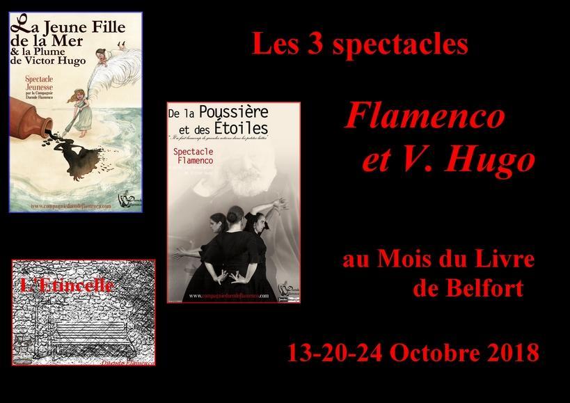 Flamenco et v hugo belfort affiche compjpg