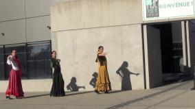 Mjc Palente - Ce qui nous lie Duende Flamenco