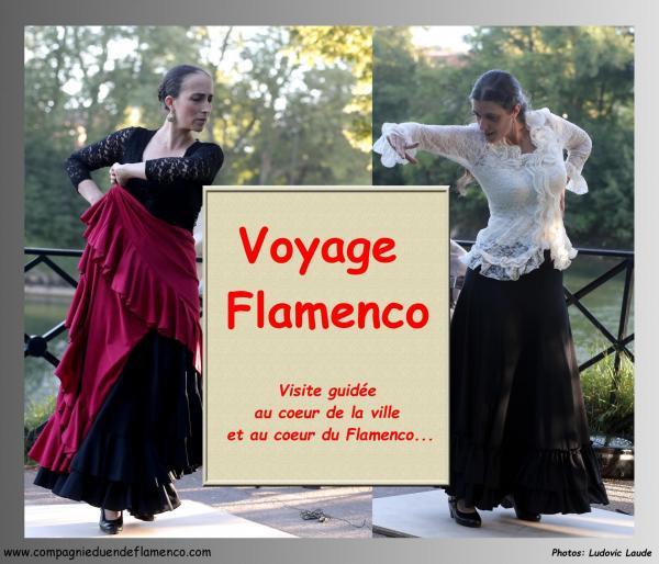 Voyage flamenco 2017